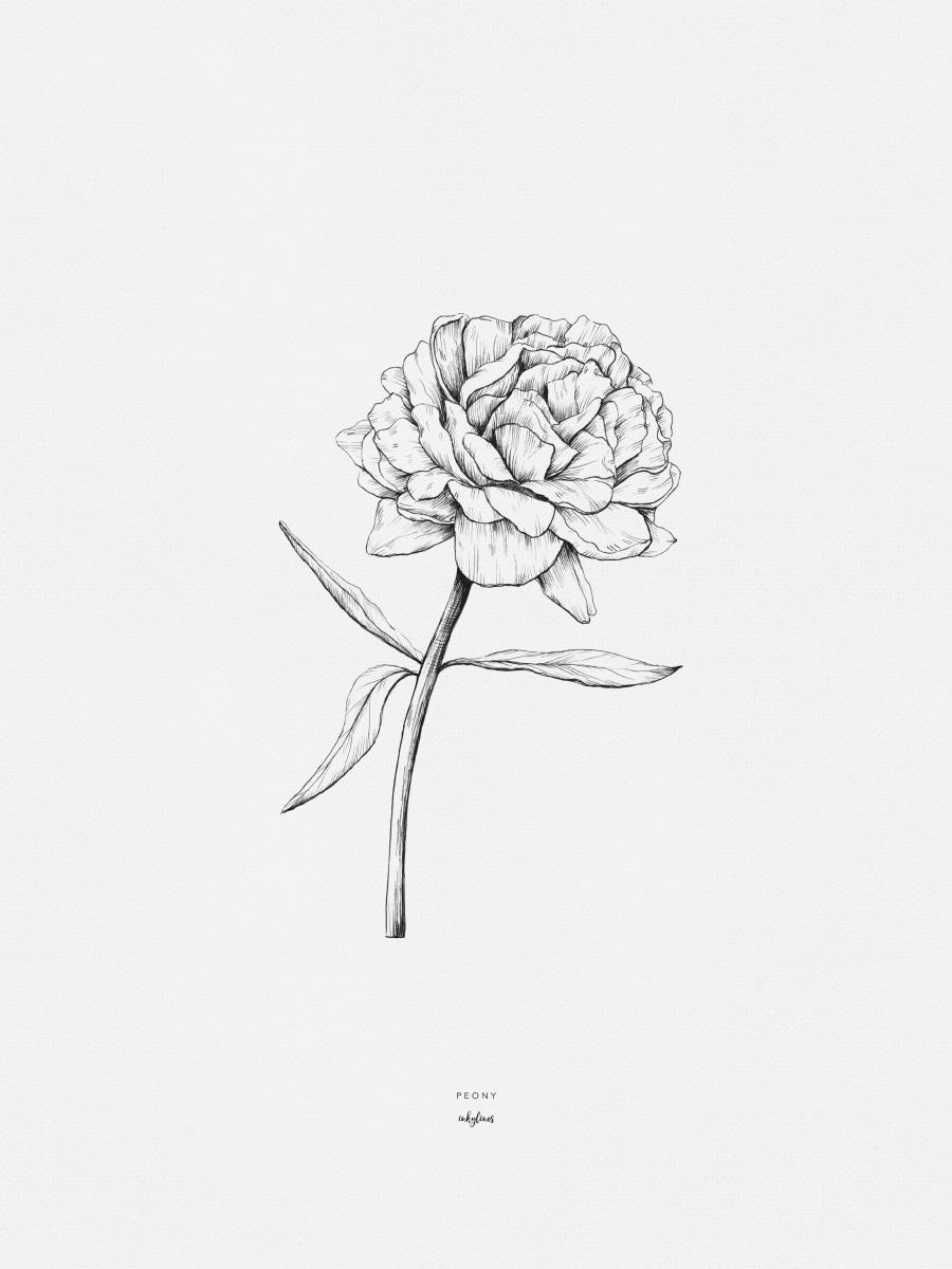 Inkylines blog nieuwe collectie bloemen for Minimal art betekenis