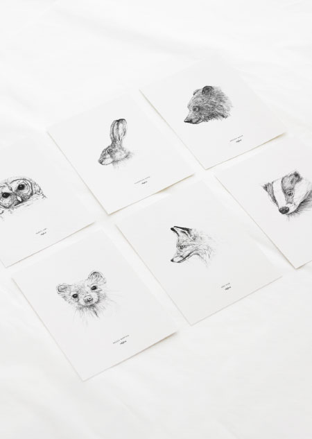 Animals set of 6
