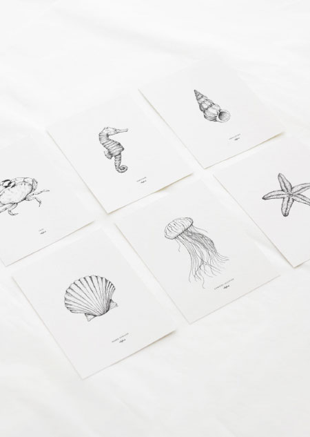Sea set of 6